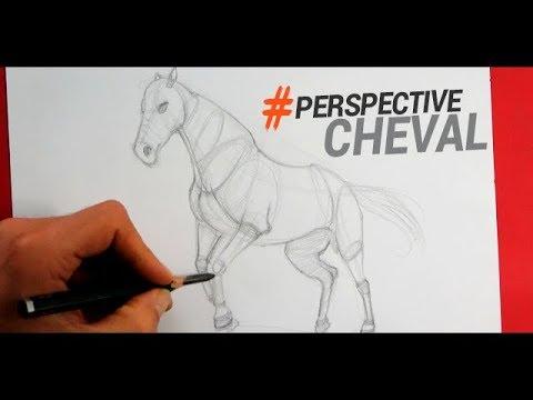 Comment dessiner un cheval en perspective youtube - Dessiner facilement un cheval ...
