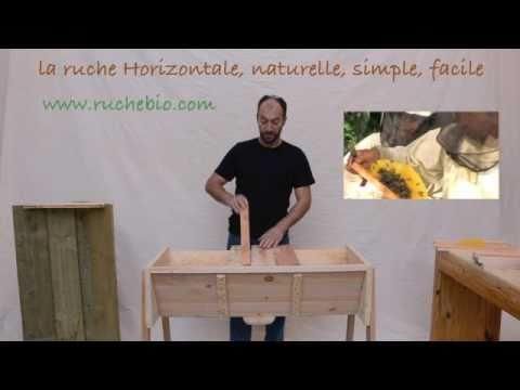 La ruche horizontale tbh ruche k nyane l 39 apiculture - La ruche a miel ...