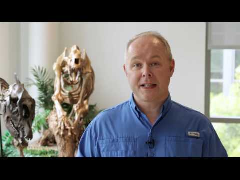 Paleontology Professor Shining a New Light On Old Bones
