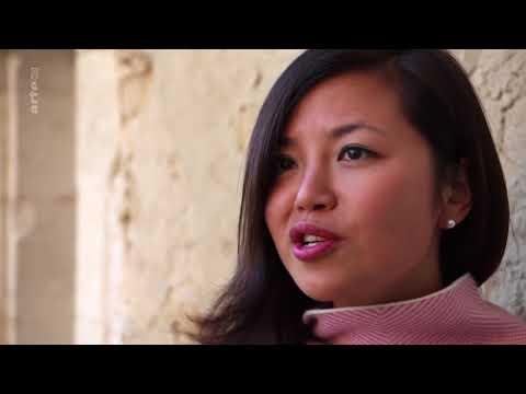 Reportage ARTE - Regards Sous Pavillon chinois - Li Lijuan