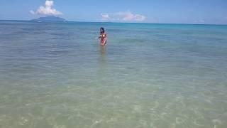 Beautiful Creole girl chasing ray fish in Seychelles