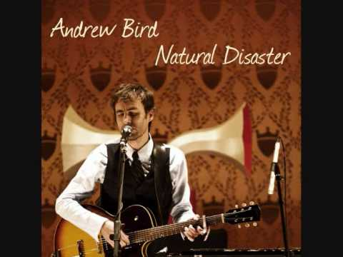 Andrew Bird Natural Disaster