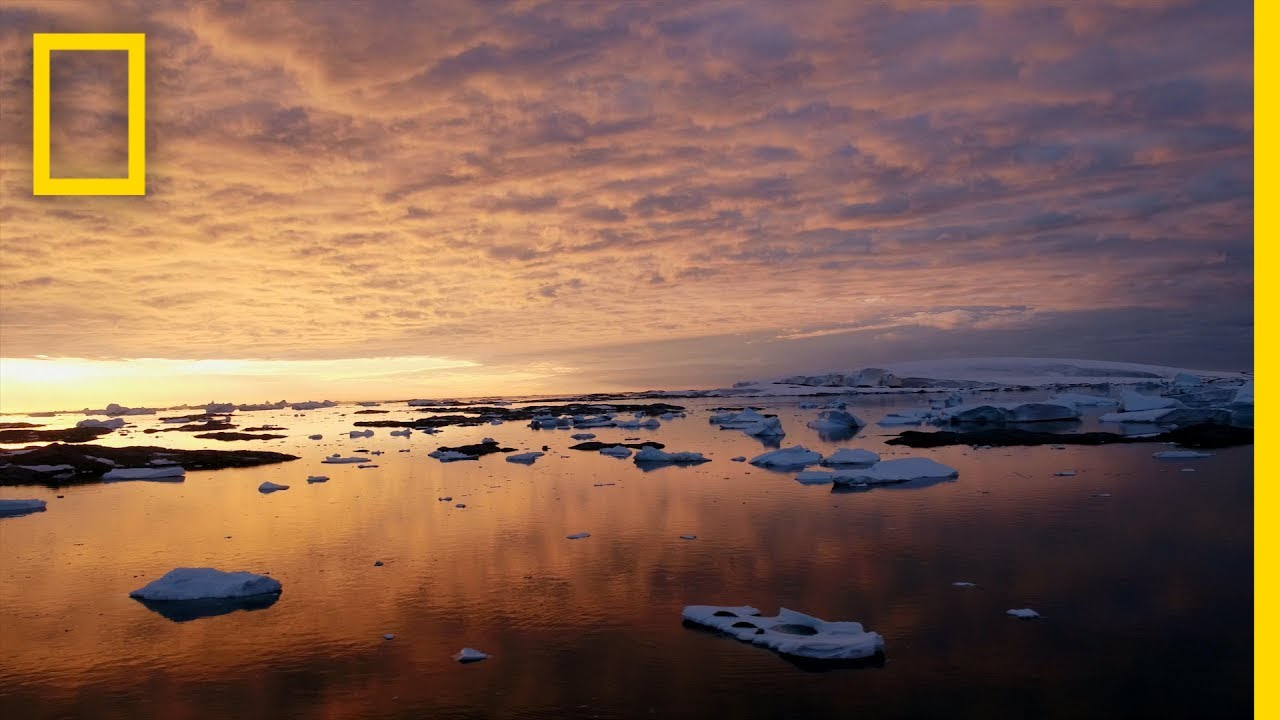 See Antarctica Like Never Before | National Geographic