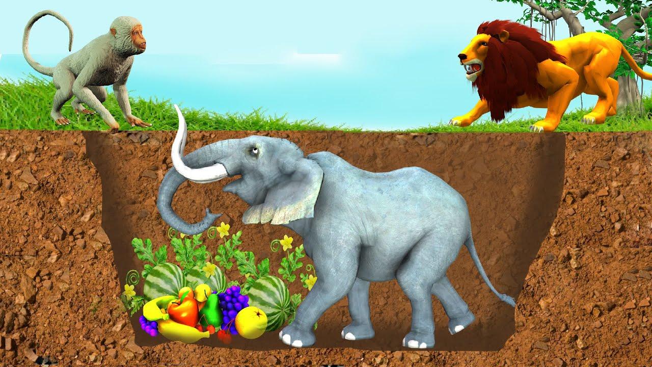 भूमिगत हाथी जाल और बंदर बचाव हिंदी कहनिया Underground Elephant Trap and Monkey Rescue Hindi Kahaniya