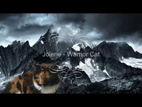 Jolene - Warrior Cat (Ferocious cat attack)
