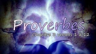 La Bible - Les Proverbes 03 versets 1 à 12 - Confie-toi en l