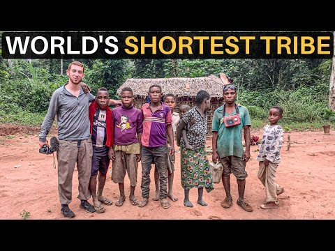 WORLD'S SHORTEST TRIBE (Pygmies of Central Africa)