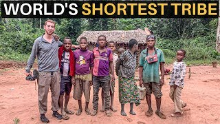 world-s-shortest-tribe-pygmies-of-central-africa
