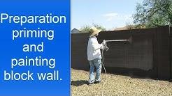 Painting a cinder block wall in Phoenix AZ.