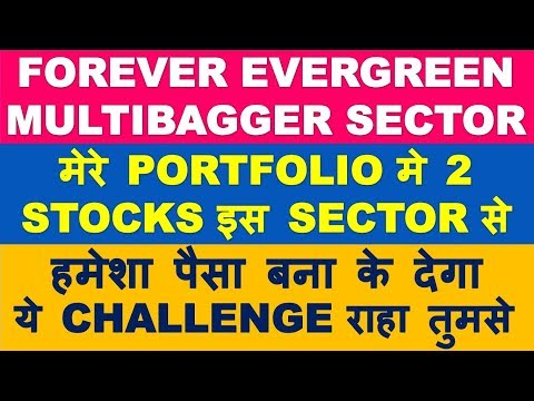 Evergreen Multibagger Sector With 3 Small Cap Mid Cap Shares | Multibagger 2020 India Latest Stocks