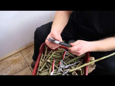 Градинска ножица GARDENA Premium BP 50 #Q_oMDJKGa7U