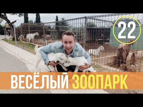 Зоопарк в Пафосе/Парк птиц и животных/Цены/Кипр