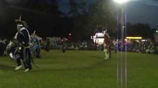 Straight Trot at Quapaw 2013