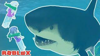 ATTACKED VON EINEM GIANT MEGALODON SHARK! 💥🦈 / Roblox: Hai-Attacke