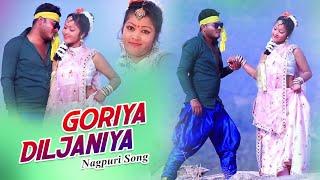 Goriya Diljaniya | Nagpuri Song 2019 | Rahul Dev & Nisha | DOP - Akash Lohra