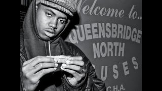 NAS,MOBB DEEP&THE HISTORY OF QUEENSBRIDGE PROJECTS with MIKE DELOREAN FROM BARS&HOOKS