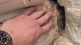 видео Какой утеплитель лучше для сруба ручной рубки?