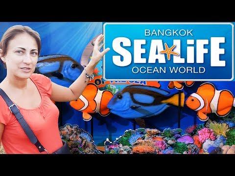Океанариум Sea Life Siam Ocean World в Бангкоке