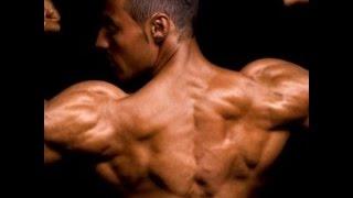 dorsal biceps rutina con calistenia espalda y brazos de acero