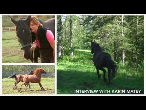 My American Horse Family - Interview with author Karin Matey