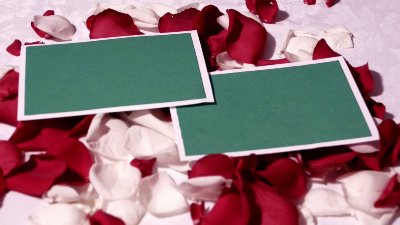 Free Hd Wedding Background Free Download Motion Background Free Video Frame 029 Youtube