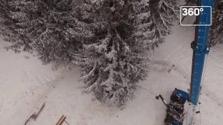 Главная новогодняя елка России со всех сторон