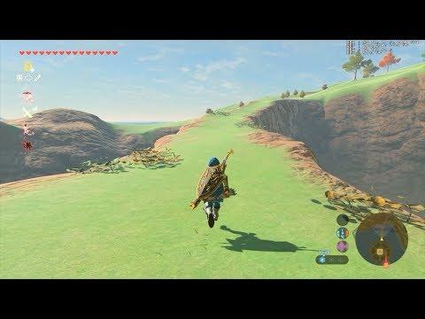 Zelda BOTW 60FPS