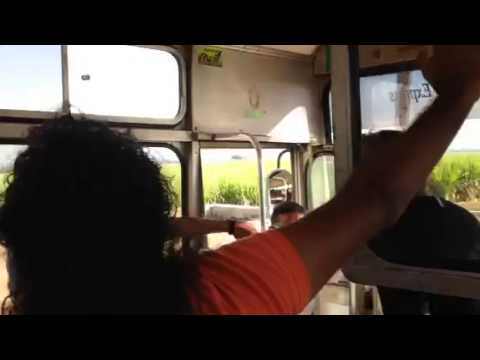 bus trip in mauritius