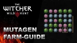 WITCHER 3 Mutagen Farm-Guide (rot, grün, blau)