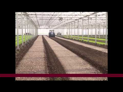 Investors Seek Safe Chinese Agricultural Sector