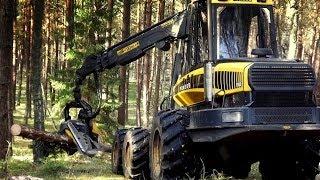Ponsse Ergo C4, H7, Harvester im Poland, HD ScorpionKing pozyskiwanie drewna, wycinka,maszyny leśne,