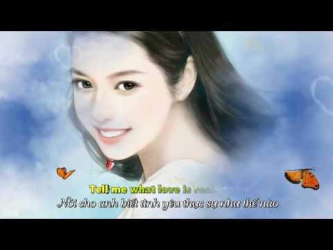 Two Butterflies (English version) - Fan Tongzhou - Lyrics HD 1080p
