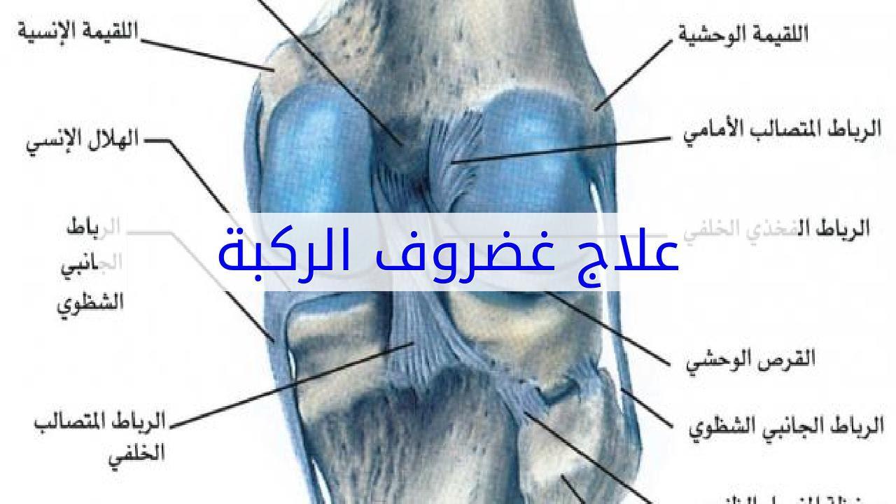 علاج غضروف الركبة - YouTube