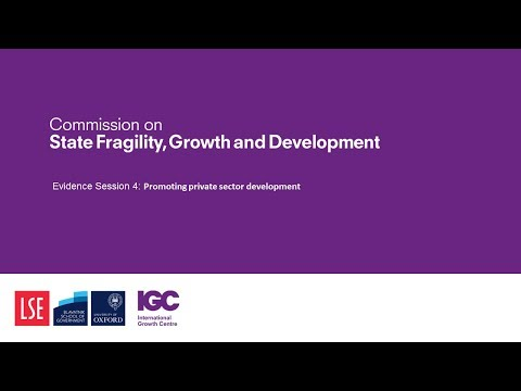 Evidence session 4: Promoting private sector development