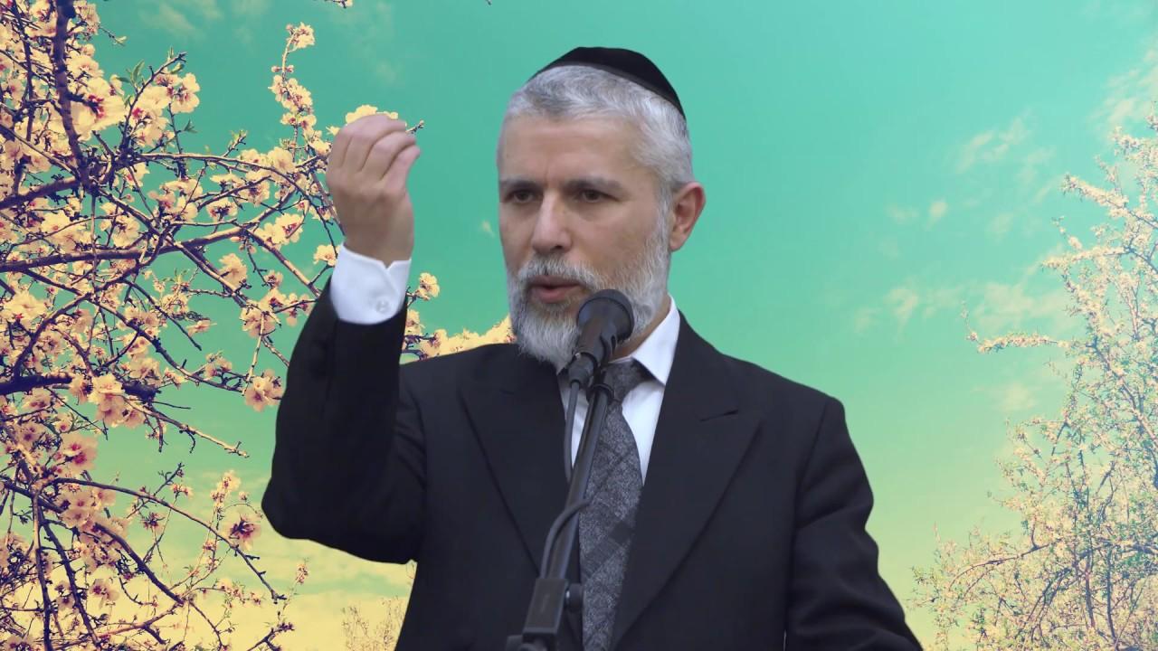 הדרכה קצרה: אל תשכח לחייך לאשתך - הרב זמיר כהן HD