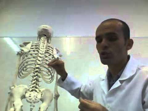 Dr. Rômulo Bezerra Membro   -  Membro da Anafiq Ceará