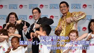 岸田外務大臣の持続可能な開発のための国連ハイレベル政治フォーラム(HLPF)等出席 thumbnail