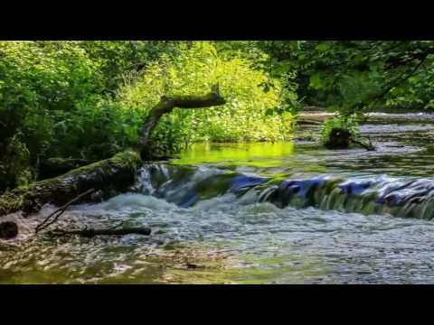 Healing Antistress Water: Relaxing Nature Sounds for Harmony and Wellness, Relax Musics