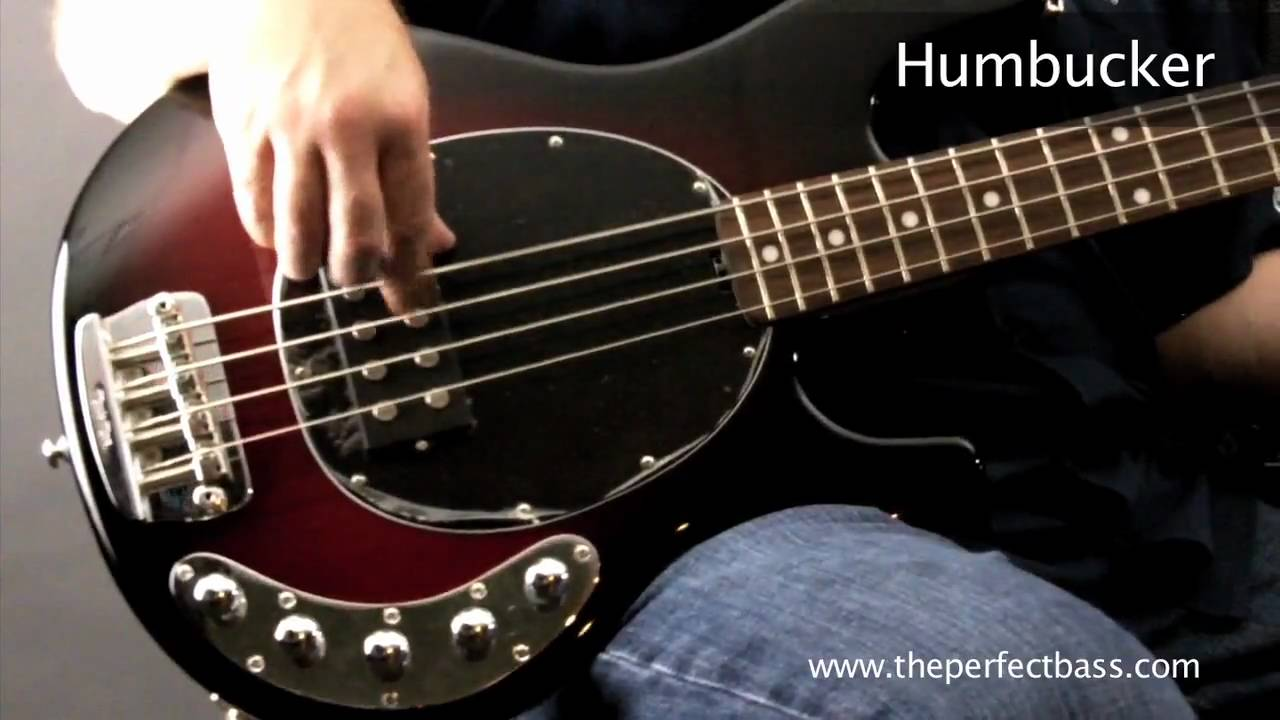 medium resolution of music man stingray w rosewood fingerboard piezo pickup demo the perfect bass youtube