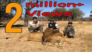 Lion Hunting | Lion Hunting in Africa | Africa | Safari | Lion Charge