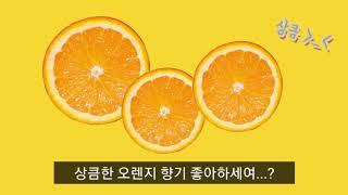 상큼한 오렌지 향기가 내 방 가득~ 지금 슬리핑 디퓨저…