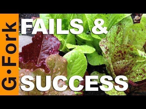 What Went Wrong & Right So Far In The Veg Garden | Garden Fails! - GardenFork.TV
