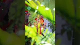 Gungan tuze othavar rahude || whatsapp status ||By Kapse Patil Creations
