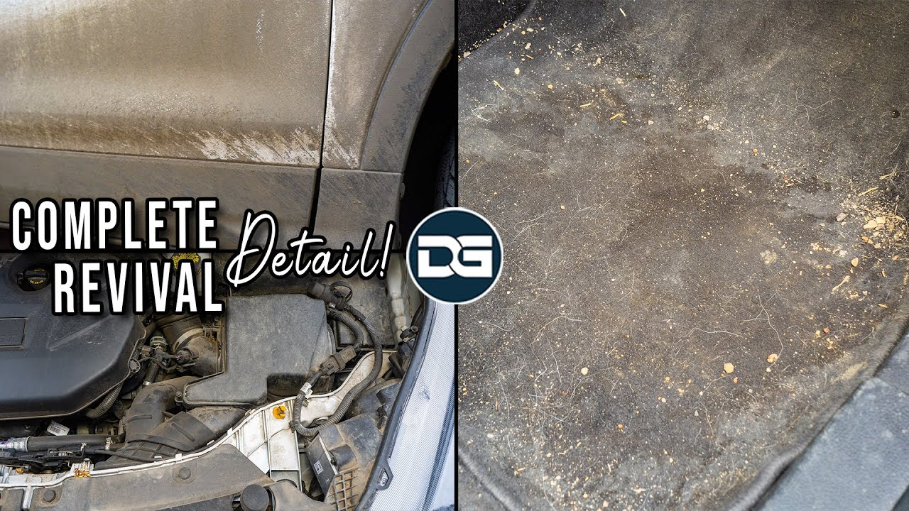 Extreme Detailing and REVIVAL of a DIRTY Ford | Satisfying Car Detailing and Ceramic Coating!