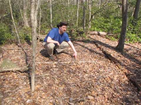 Afoot In Connecticut 11 - Finding Deer Beds