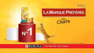 Baixar Friskies®, la marque préférée des chats ! version courte