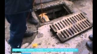 Саратовские спасатели вызволили собаку из водного плена