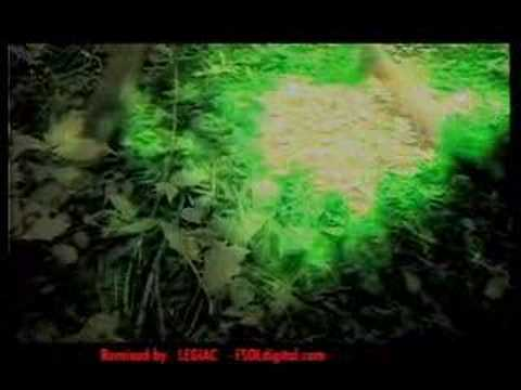 HUMANOID - STAKKER HUMANOID remixed by LEGIAC