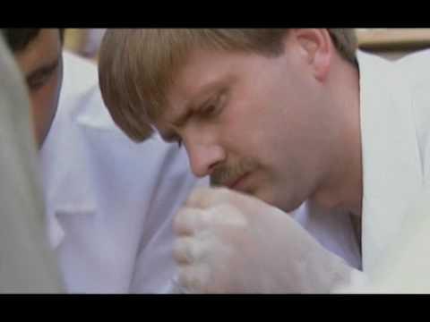 mutilation genitals video spank Male