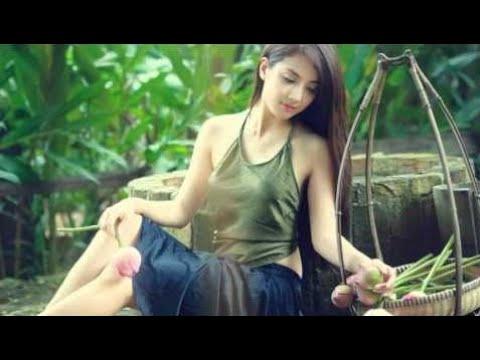 Dog sleep music -  vietnam traditional music | relaxing music sleep | best asian music ever